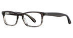 Continental Optical Imports Precision 411 Grey