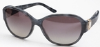 Bvlgari BV8109H Grey with Grey Gradient Lenses