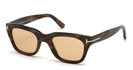Tom Ford FT0237 Brown Horn with Roviex Brown Lenses