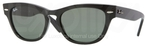 Ray Ban RB4169 Black with Crystal Green Lenses