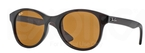 Ray Ban RB4203 Shiny Brown with Brown Lenses
