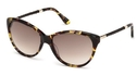 Tod's TO0082 Havana with Gradient Brown Lenses