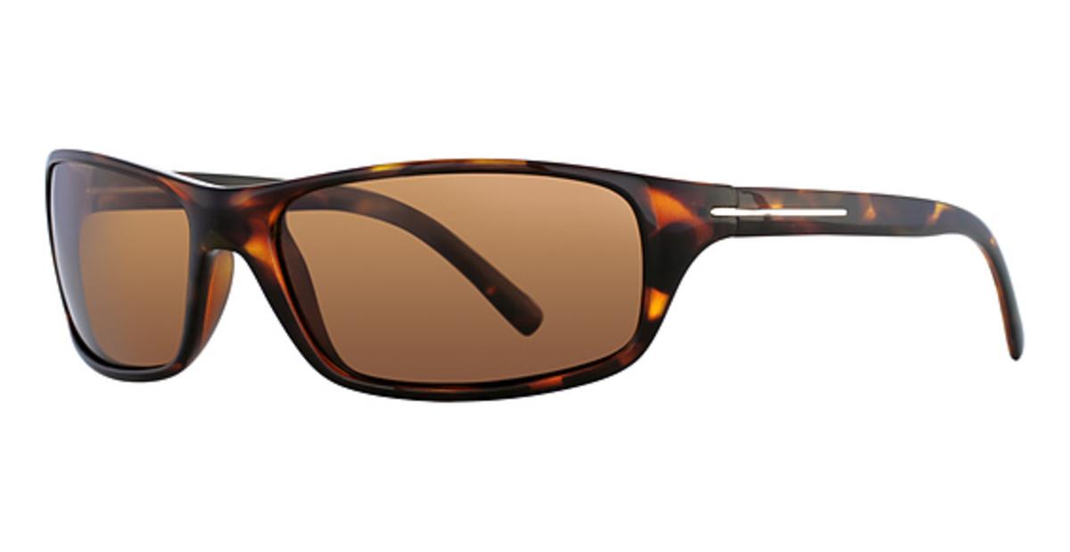 Serengeti Pisa Sunglasses