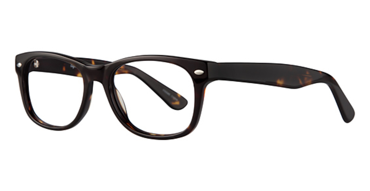 6d1d1bc8a8e Eight to Eighty Parker Tortoise. Tortoise