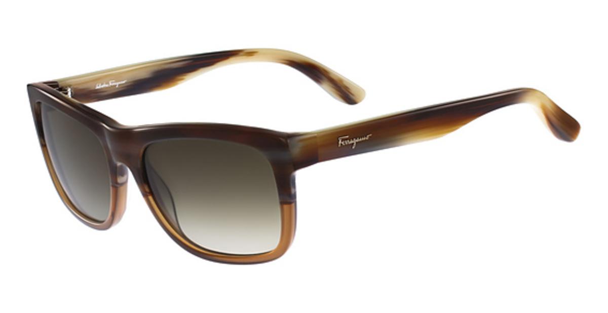 Maui Jim Warranty >> Salvatore Ferragamo SF686S Sunglasses