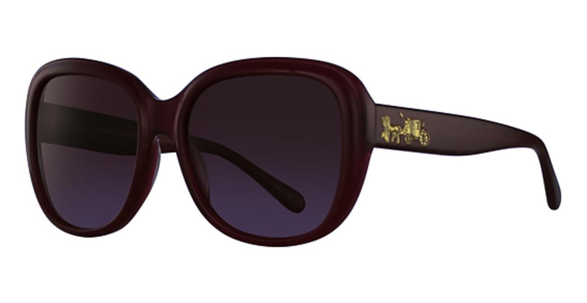 13263a88dda7 Coach HC8207F Sunglasses