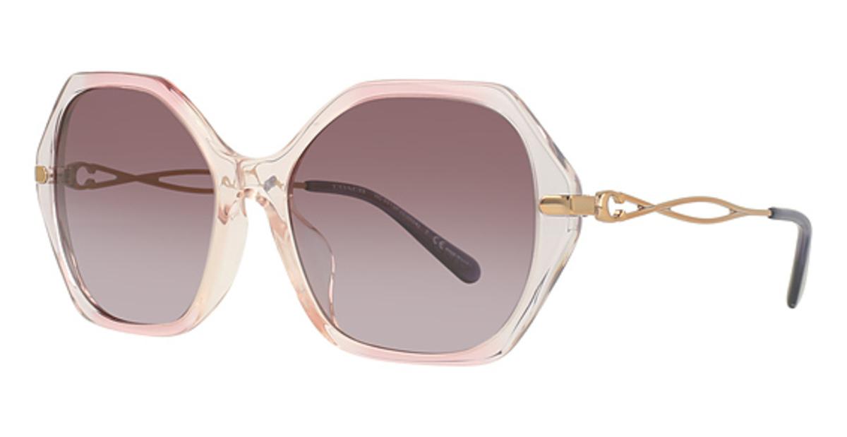 Coach HC8315F Sunglasses