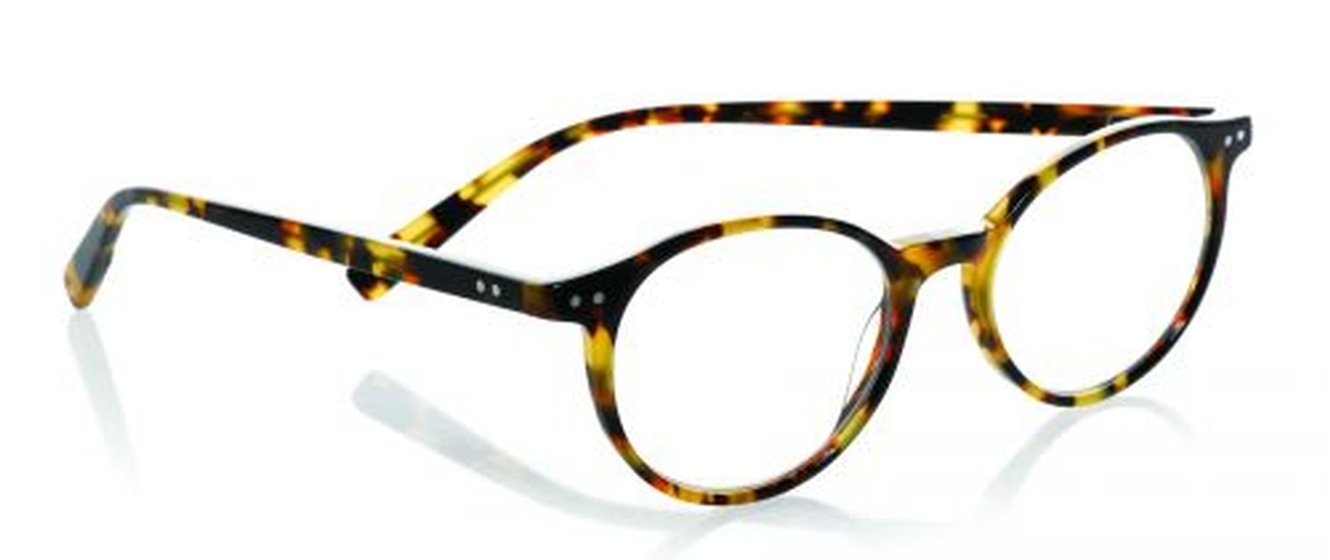 Eyebobs Case Closed Reading Glasses