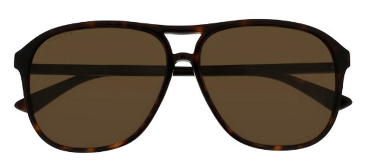 b8a4e8f2f37 Dark Tortoise with Brown Lenses