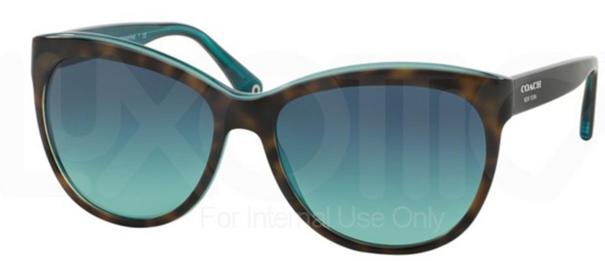 74997cbdd2b3 Dark Tortoise/Teal w/ Blue Teal Gradient Lenses
