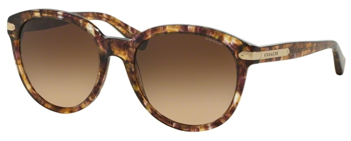 1f3b119f32 ... real coach hc8140 l111 confetti light brown w brown gradient lenses.  confetti light brown w ...