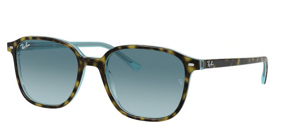 Ray Ban RB2193 Leonard Sunglasses
