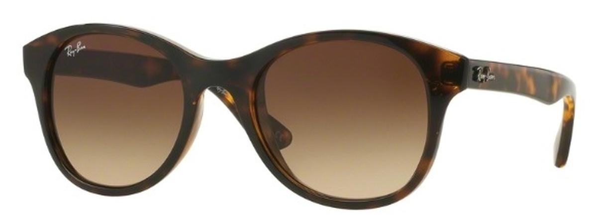 Ray Ban RB4203 Sunglasses