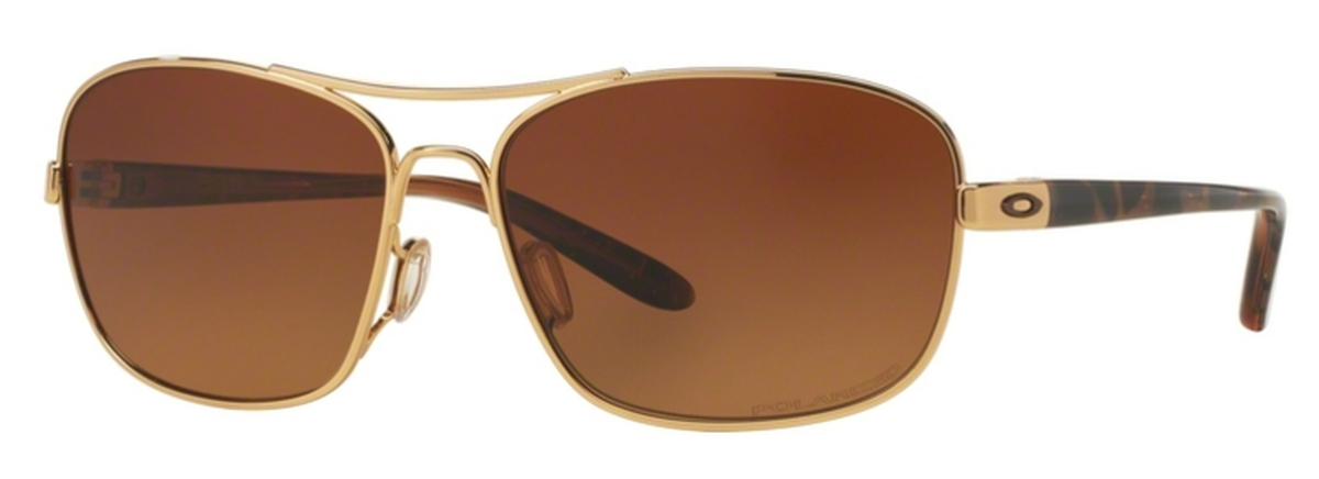 6d73c44c0a 03 Polished Gold with Brown Gradient Polarized Lenses