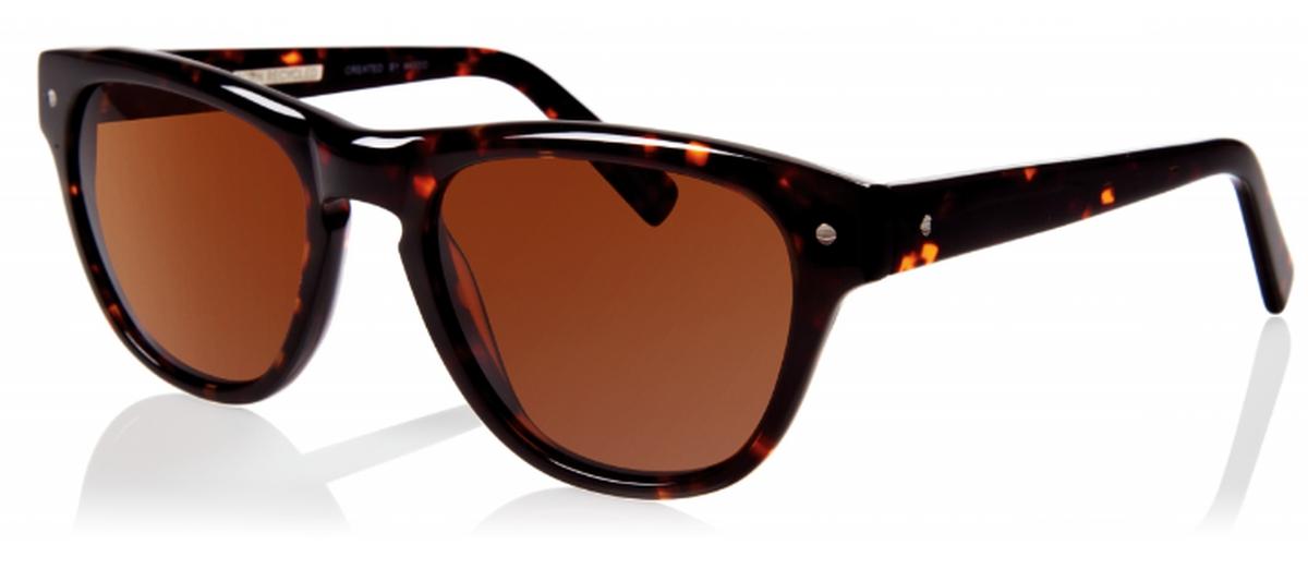 eco toronto sunglasses