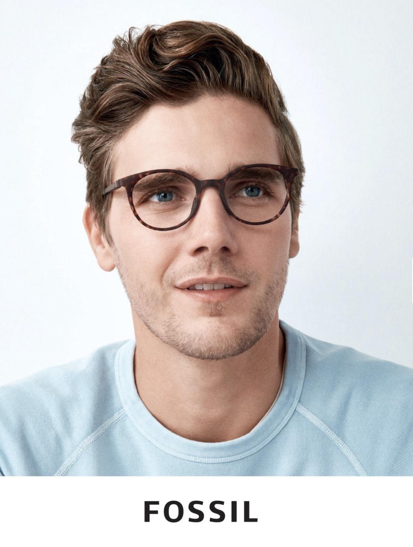 Fossil Glasses